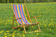 Deck chair in the garden. With yellow flowers Royalty Free Stock Photography
