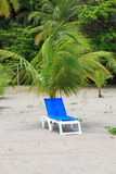 Deck chair under palm tree Stock Image