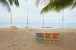 Deck chair under a palm tree Stock Image
