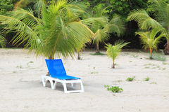 Deck chair under palm tree Royalty Free Stock Images