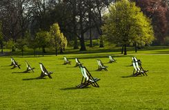 Deck chairs in a park Stock Images