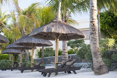 Deck chairs under an umbrella on a tropical beach. Royalty Free Stock Photo