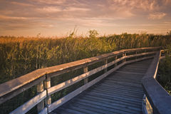 Deck in Everglades National Park Royalty Free Stock Photography