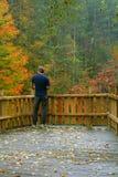 deck jesieni Obraz Royalty Free