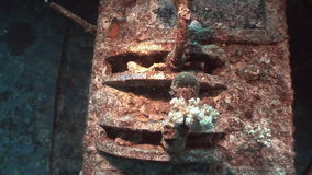 Deck of Salem Express shipwrecks underwater in the Red Sea in Egypt. stock footage