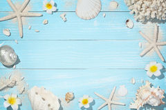 Deck with shells Stock Images