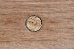 Deck on the ship. wood texture. Valuable species of wood material cork stopper royalty free stock image