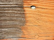 Deck stain - before & after. Before and after close-up of stained board stock image