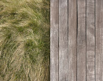 Deck and wild grass Stock Photo