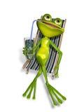 在deckchair的青蛙 免版税库存照片