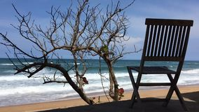 Deckchair time lapse Vietnam. A time lapse clip looking out to sea on a sand beach with a deckchair and a small tree stock video footage