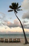 Deckchairs bajo palmtree en la playa en la puesta del sol Foto de archivo