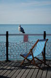 Deckchairs on a deck. With a seagull in Brighton Stock Photography