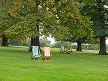 Deckchairs i parkera royaltyfria bilder