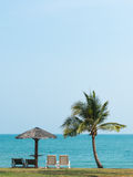 Deckchairs, Meer und Palmen, sehr schöne Natur Lizenzfreies Stockbild
