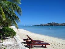 Deckchairs sulla spiaggia esotica vuota Immagine Stock