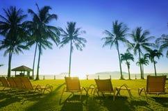 Deckchairs sur la plage Photos libres de droits