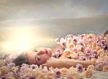 Decke von Blumen Stockbild