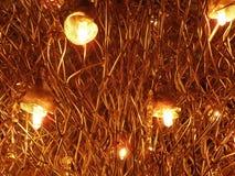 Decke von Lichtern Stockfoto