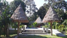 Decken Sie Dächer und Pool im Freien mit Stroh Stockbilder