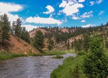 Deckers Canyon Colorado stream stock images