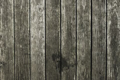 Decking en bois de pin inextricable de Wethered images stock