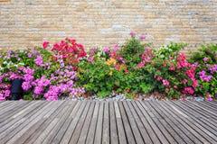 Decking et usine en bois avec le jardin de mur décoratif photo libre de droits
