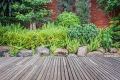 Decking et usine en bois avec le jardin de mur décoratif photos stock