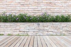 Decking o suelo y planta de madera en el jardín decorativo imágenes de archivo libres de regalías