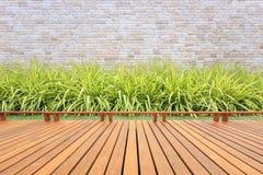 Decking ou revestimento e planta de madeira no jardim decorativo fotografia de stock