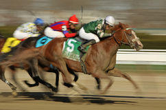 Declan's Warrior Wins The Bay Shore Stakes Royalty Free Stock Photography