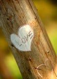 Declaración del amor Imagen de archivo libre de regalías