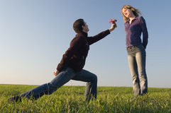 Declaration of love. Guy stand on a knee and gives a bouquet to the girl Royalty Free Stock Photos