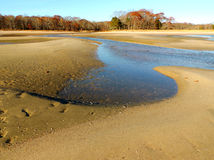 Declinare le pozze di marea nella sabbia Fotografie Stock