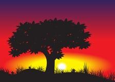 Decline. Tree of black color against a decline stock illustration