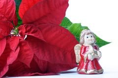 Deco de los Poinsettias Imagenes de archivo
