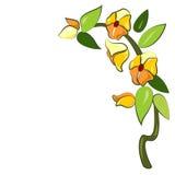 Deco, fleur-croquis pour la fusion Photographie stock