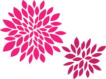 Deco Mums Royalty Free Stock Photography