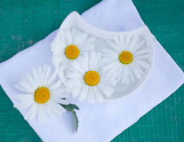 Decoction of chamomile health. Camomile tea for spa treatments and moisturizing Royalty Free Stock Images