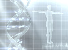 Decoding the genome Stock Photos