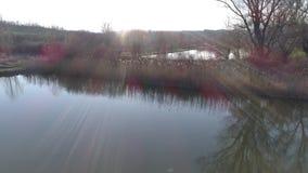 Decole de lakeshore em um dia ensolarado, perto de um lago pequeno da pesca em Sarisap, Hungria vídeos de arquivo