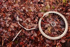 Decomposed bicycle parts Royalty Free Stock Photo