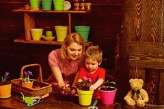 Decor concept. Little boy and woman planting flower in new pot decor. Natural eco decor. Home decor stock photography
