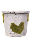 Decor flowerpot with stone texture Stock Photos