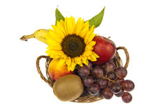 Decor of fruit basket with sunflower Royalty Free Stock Photo