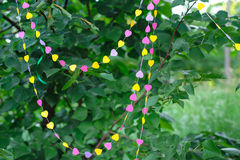 Decor garland of hearts on green leaves Royalty Free Stock Images