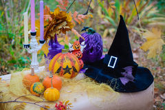 The decor and gifts for Halloween Stock Image