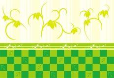 Decor in groen Royalty-vrije Stock Foto's