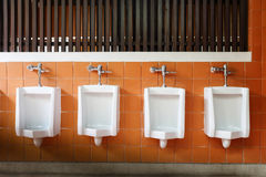 Decor interior of white urinals in men bathroom Royalty Free Stock Photo