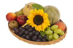 Decor of large fruit basket with sunflower Royalty Free Stock Images